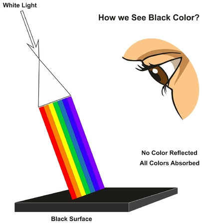 How we See Black Color infographic diagram showing visible spectrum light on surface and colors reflected or absorbed according to its color for physics science education