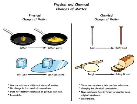 Illustration for Physical and Chemical Changes of Matter infographic diagram a comparison with examples for each one including butter and ice cube melt rusty nail and dough to baked bread for science education - Royalty Free Image