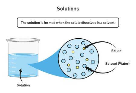 Illustration pour Solution infographic diagram showing container filled by solution which formed when the solute dissolved in a solvent for chemistry science education - image libre de droit