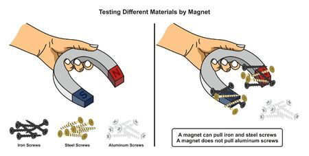 Illustration pour Testing Different Materials by Magnet infographic diagram showing how iron and steel screws attracted to the magnet while aluminum ones does not for physics science education - image libre de droit