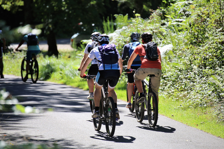 Group of mountain bikers cycling in the forest