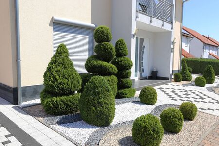 Photo for Modern front yard with decorative gravel and boxwoods - Royalty Free Image