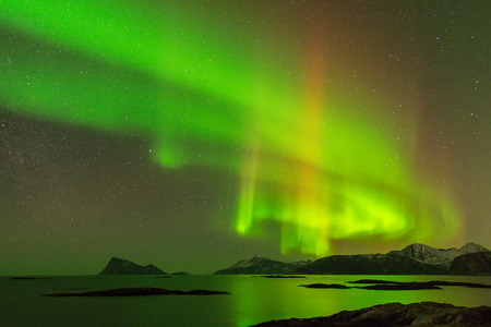 The Aurora Borealis  northern lights  photographed in Sommaroy, Norway