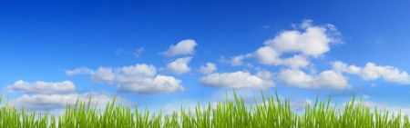 Sky and grass panorama banner