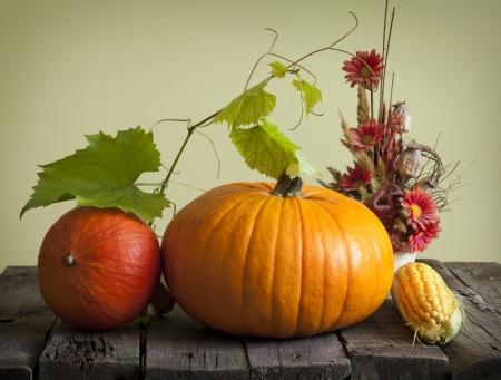 Autumn pumpkins and corn vintage still life