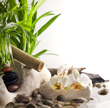 Orchids and zen stones on water spa concept on white backgroundの写真素材
