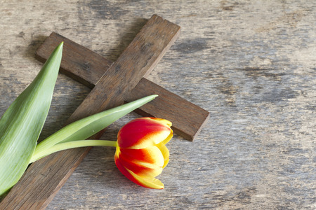Photo for Spring tulip and cross abstract easter concept - Royalty Free Image