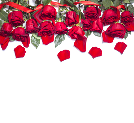Photo for Red fresh rose flowers on white background - Royalty Free Image