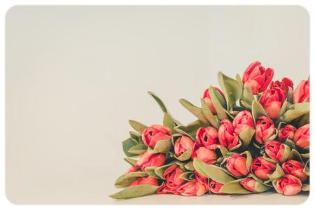 Vintage old flower, toned photo.