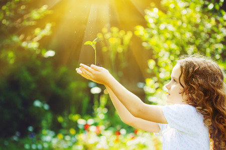 Foto de Little girl holding young green plant in sunlight. Ecology concept. Background toning to instagram filter. - Imagen libre de derechos