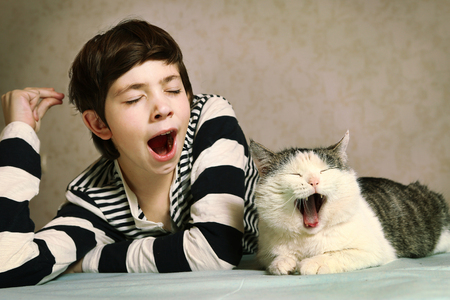 Photo for teenager handsome boy in striped blouse and siberian cat close up portrait yawn synchronised together - Royalty Free Image