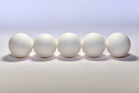 Photo pour Five white chicken eggs lined horizontally side by side a blunt bottom round side forward center on a light background. - image libre de droit