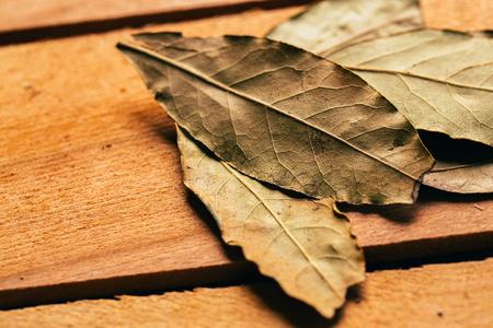 bay leaf on wooden background close up.
