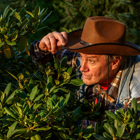 Photo for Senior adult man or a farmer, in a brown cowboy hat, looks out of the bushes and makes a grimace. - Royalty Free Image
