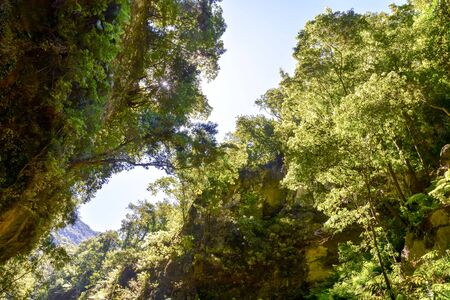 Photo pour Photo Picture of a Valley in the Canary Islands - image libre de droit