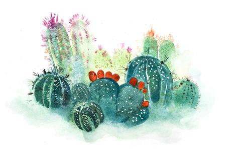 Foto de Watercolor hand drawn spiky cactus bloom flower. - Imagen libre de derechos