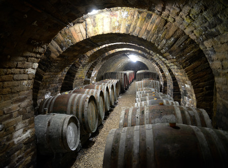 Ancient wine cellar with wooden wine barrels.
