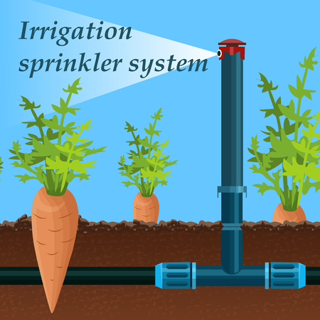 Illustration for Cartoon Lettering Irrigation Sprinkler System. Equipment Spraying System Reduces Temperature Surface Layer Air and Increases its Humidity. Carrot Grows Field. Stationary Device Fills with Moisture. - Royalty Free Image