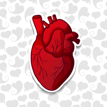 Drawing the human heart on background pattern of cartoon hearts. Vector illustration