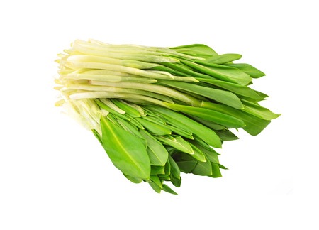 Wild leek bunch, isolated on white background