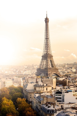 Vintage Paris View