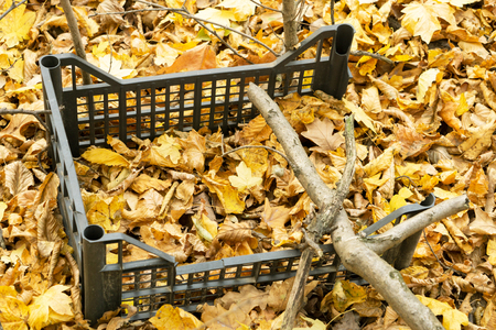 old garbage covered with yellow foliage, globally ecological problem of the planet