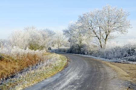 Morning Frost On Country Road