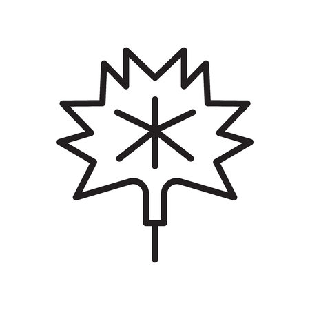 Maple leaf icon vector isolated on white background for your web and mobile app design
