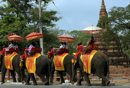 An elephant taxi in front of one of the many temples in the temple city of Ayutthaya north of Bangkok in Thailand