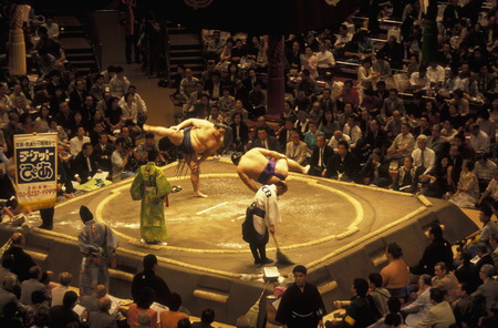 a sumo fight in the sumo arena in the City center of Tokyo in Japan in Asia,