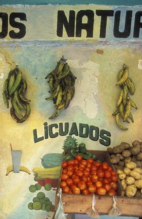 a Market in the city of Tela near San Pedro Sula on the caribian sea in Honduras in Central America,