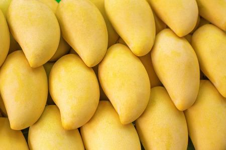 Closeup of Yellow Mango on market - exotic thai fruits