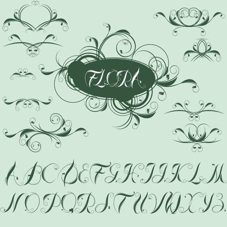 Illustration pour calligraphic design elements and alphabet.  - image libre de droit