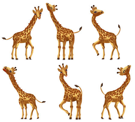 Illustration for Happy Cartoon character Giraffe from different angles. Funny, Cute, smiling African animals. Vector illustration. - Royalty Free Image
