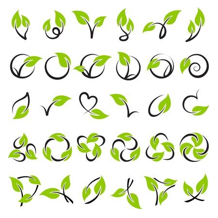 Leaves. Vector logo template set. Elements for design. Icon set.