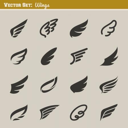 Wings  Set of design elements  Vector illustration