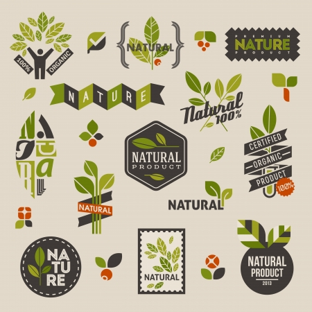 Nature labels and emblems with green leaves  Set of vector design elementsのイラスト素材