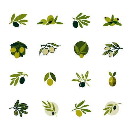 Illustration for Olive branch Set of  design templates and icons - Royalty Free Image