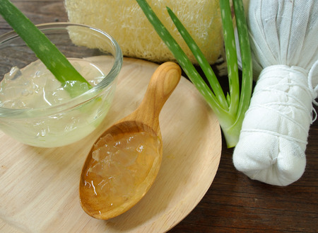 aloe vera spa for use in skin care