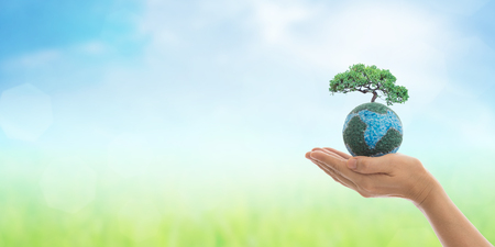 Photo for Earth in hands, growing big tree on soil eco bio globe in clean natural background. World environment day and green concept. - Royalty Free Image