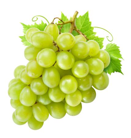 Foto für Grape isolated. Green grapes with leaves on white. - Lizenzfreies Bild