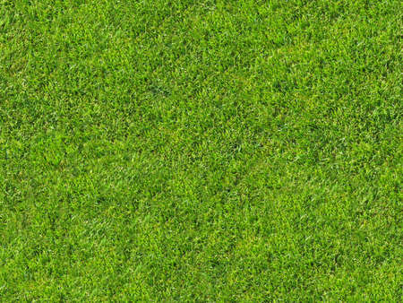 Seamless grass texture for 3d or 2d texturing