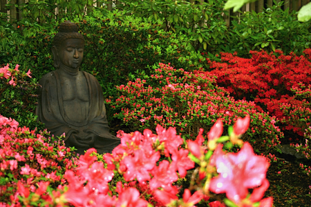 Statue in Rhododendron
