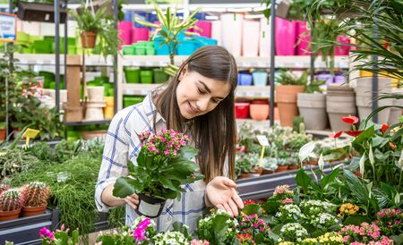 Photo for Beautiful young woman in a flower shop and choosing flowers. The concept of gardening and flowers . - Royalty Free Image