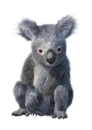 Photo pour 3D rendering of a cute koala bear isolated on white background - image libre de droit