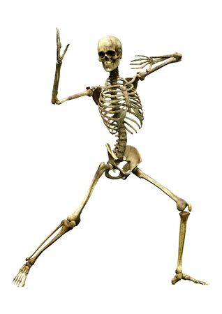 Photo pour 3D rendering of a human skeleton isolated on white background - image libre de droit