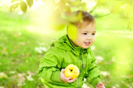 The small beautiful boy walks on a green glade with an apple