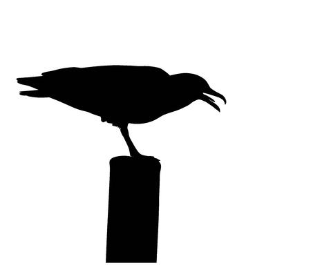 Illustration pour Screaming seagull silhouette.  Vector EPS 8 - image libre de droit
