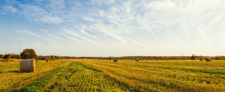 Panorama of scenic view of hay stacks at fall North Cape Coastal Drive, Prince Edward Island, Canada