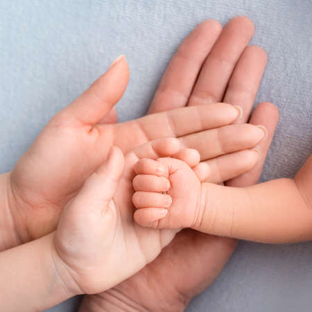 Photo pour Newborn baby hand. Family, mom, dad, and an older child are holding the fist of a newborn. - image libre de droit